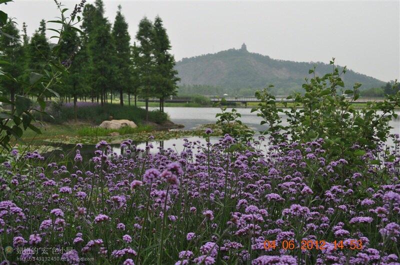上海辰山植物园在上海市松江区靠近大学城,华东地区规模最大的植物园