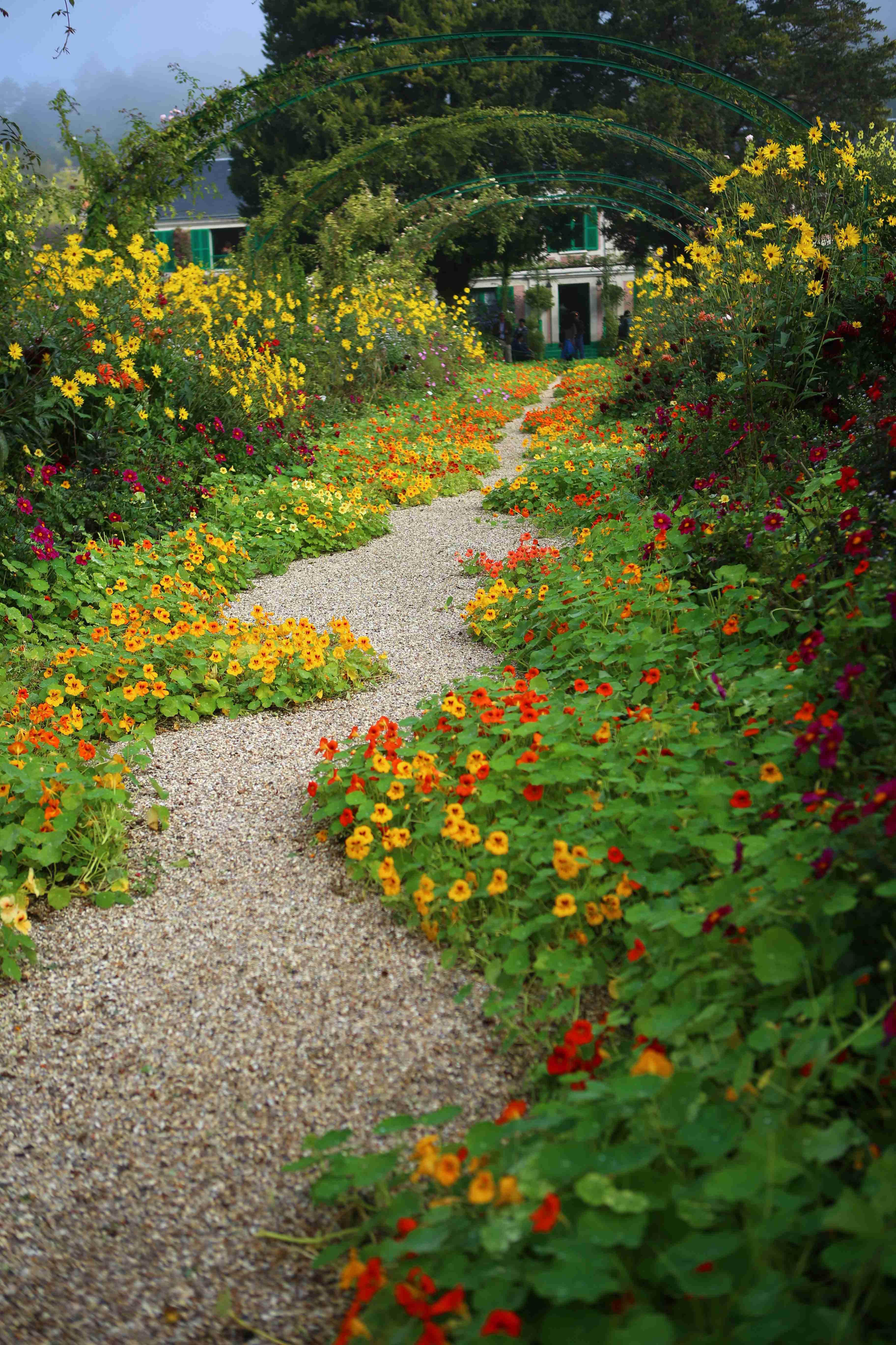 莫奈的花园