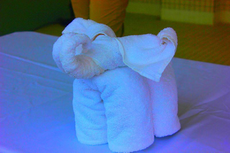 客房部的工作人员在教大家怎么样用浴巾折小动物.