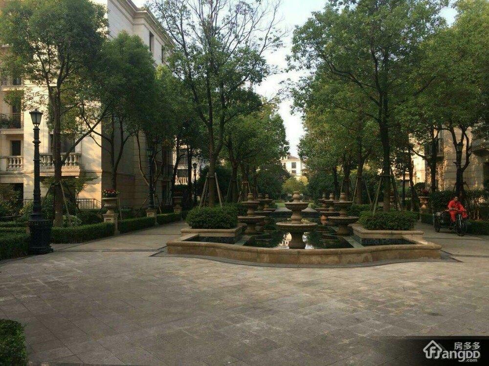 杭州湿地植物园