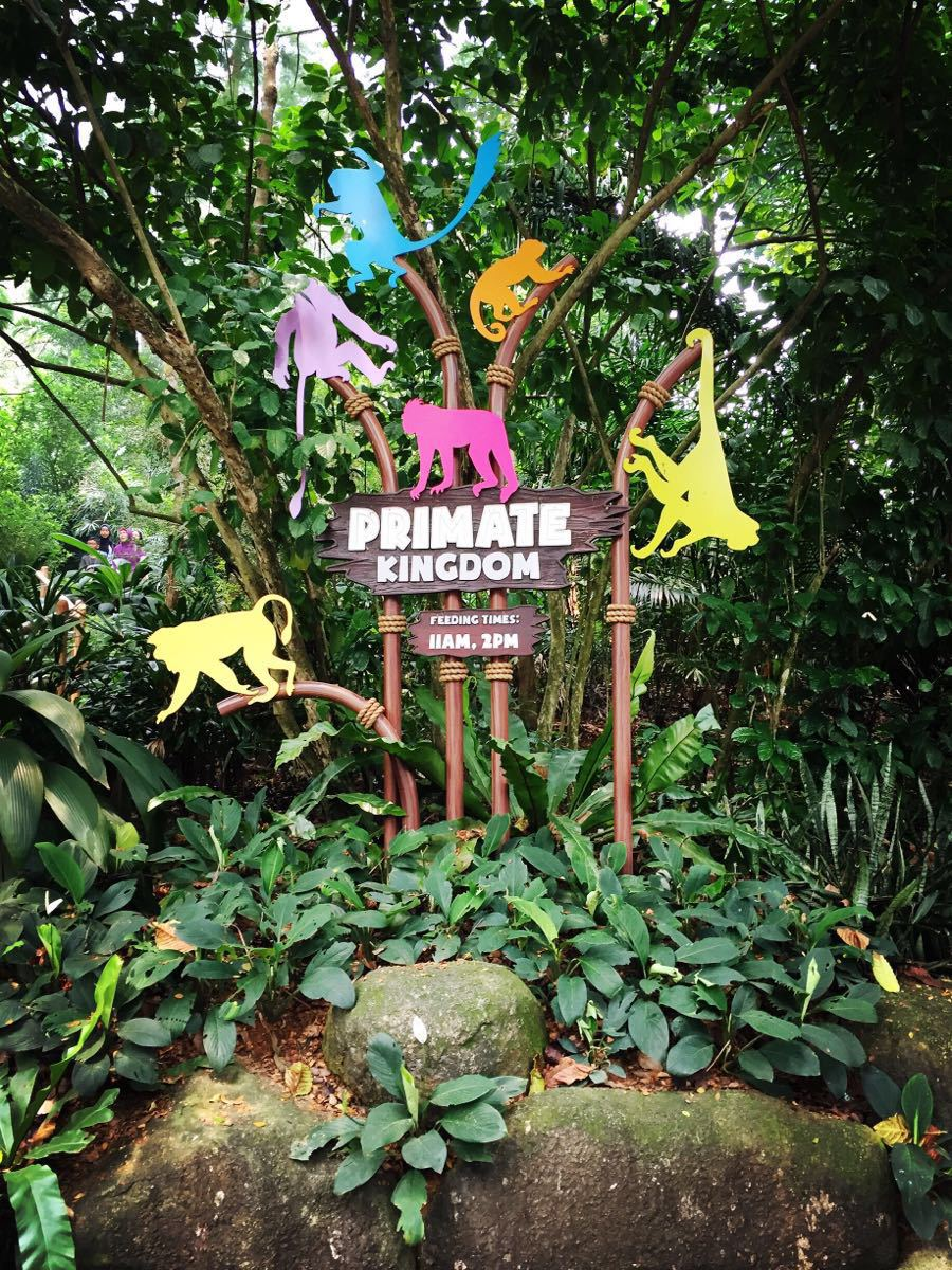 【携程攻略】新加坡新加坡动物园景点