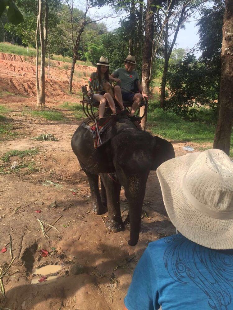 性价比高!普吉 海景大象营地·骑象体验