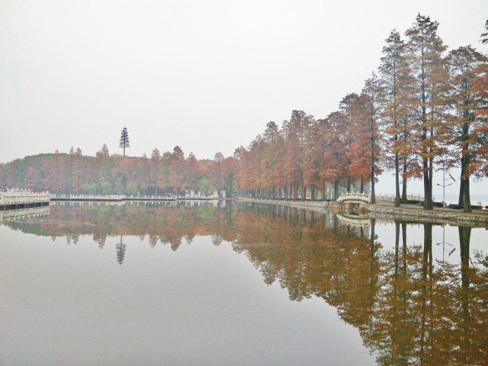 【携程攻略】湖北武汉东湖好玩吗,湖北东湖景点怎么样