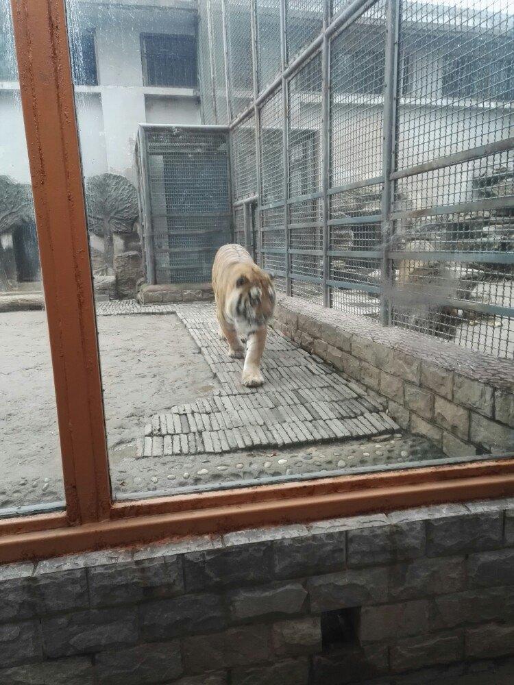 【携程攻略】山东济南动物园景点