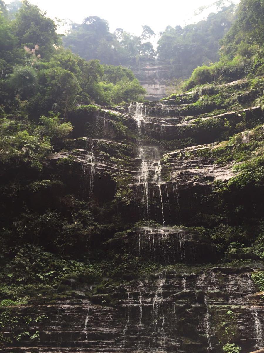 【携程攻略】四川雅安碧峰峡好玩吗