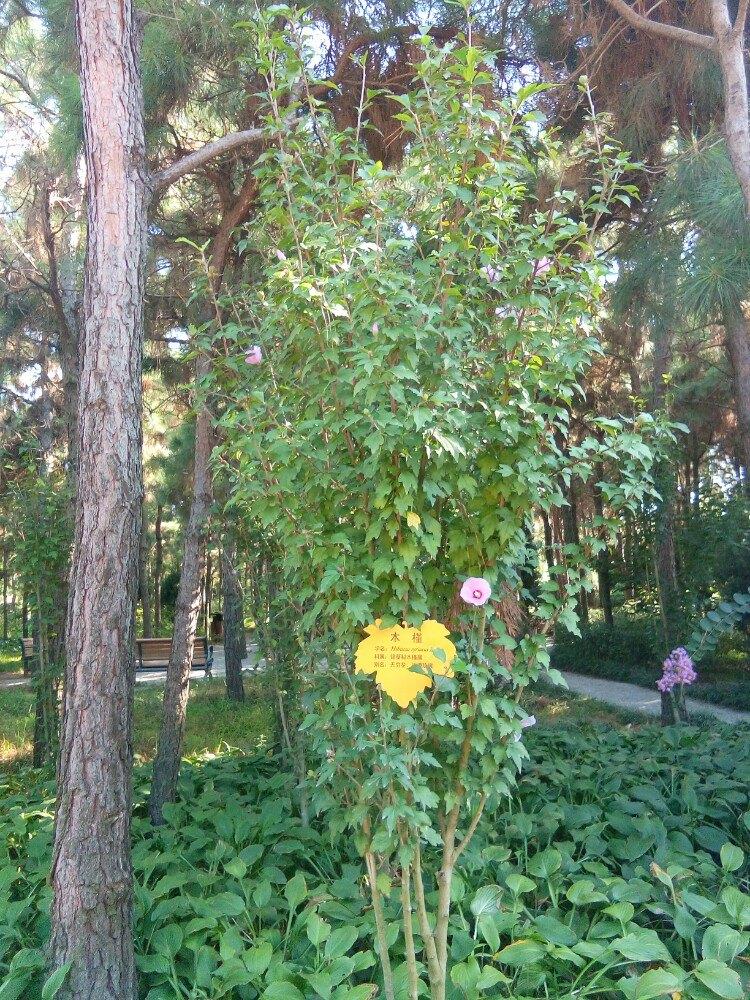 临沂动植物园