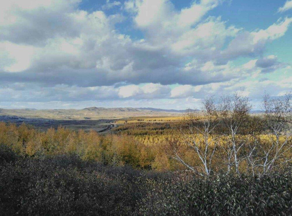 【携程攻略】河北塞罕坝国家森林公园景点,秋日的风景
