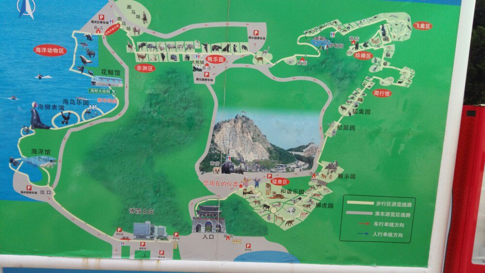 【携程攻略】山东神雕山野生动物自然保护区景点