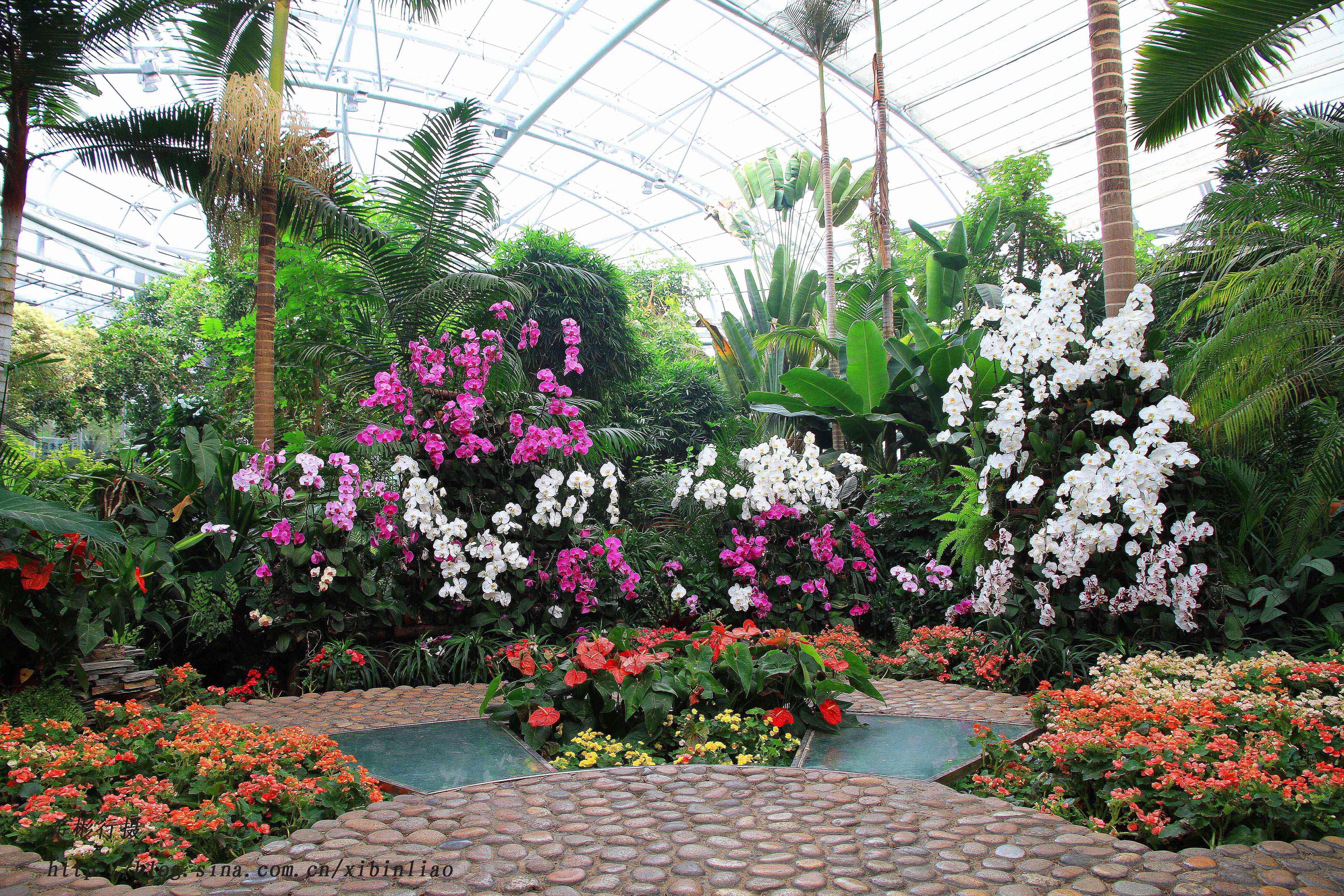 北京植物园温室