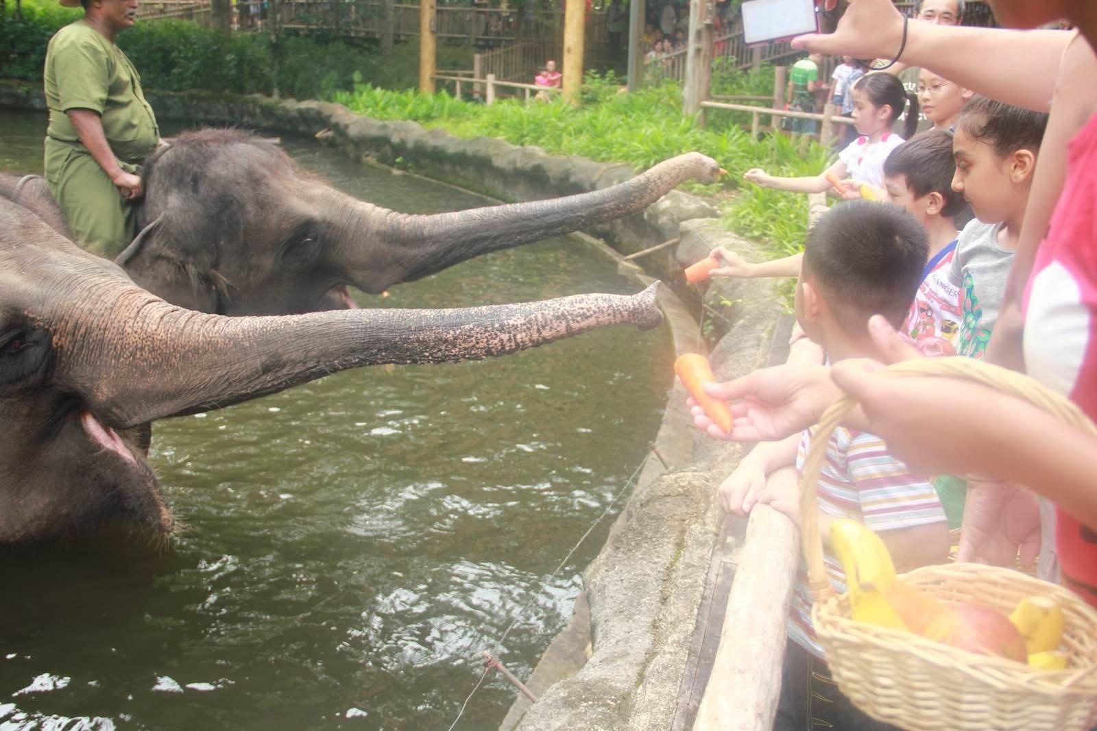 新加坡有三个动物园:日间动物园,河川生态动物园,夜间动物园,还有一