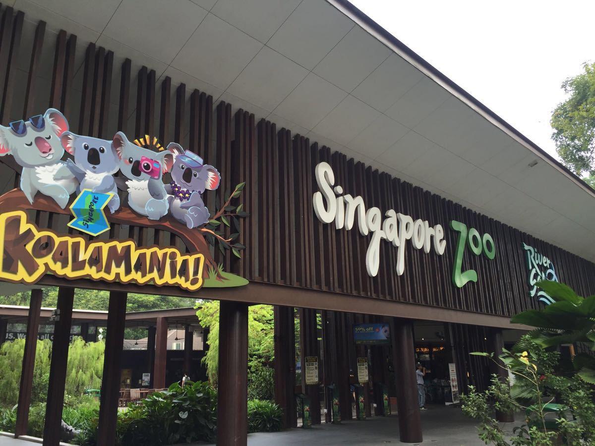 新加坡动物园和北京动物园有着本质的区别,看不到在笼子了失去自由的动物们,取而代之的是动物们的悠闲自在,惬意的很呀。同时没有丝毫的异味,鸟语花香热带雨林的感觉,我很诧异也很佩服。管理水平到位,设计的非常合理。动物们和游客之间的距离看似非常近,但是却横跨着不可逾越的障碍。有时候在想,如果北京动物园也可以如此设计,那该有多好。如果说你觉得新加坡动物园只是光看动物,那么就错了。这里还有一个小型的水上乐园,孩子们可以在这里玩水。地面的材质属于比较软质的材料,孩子们即使摔倒也不会很疼。这一点应该是充分考虑到了小孩子的
