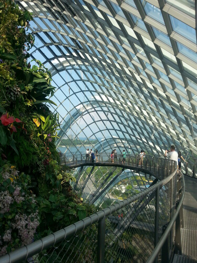【携程攻略】新加坡新加坡滨海湾花园景点