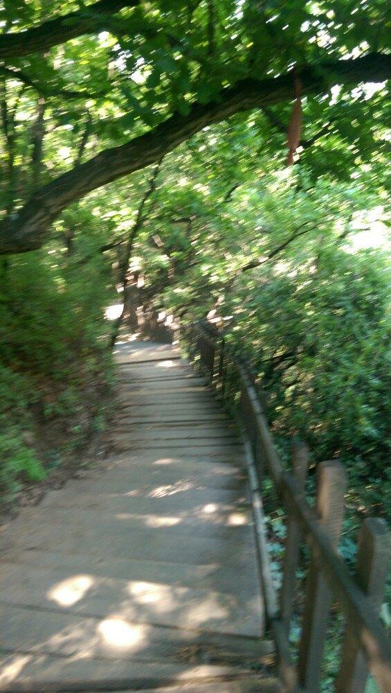 翠枫山自然风景区