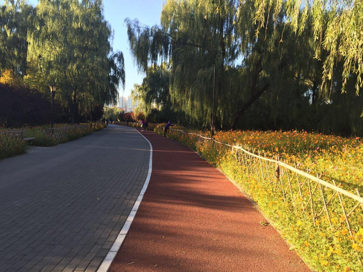 【携程攻略】北京朝阳公园景点