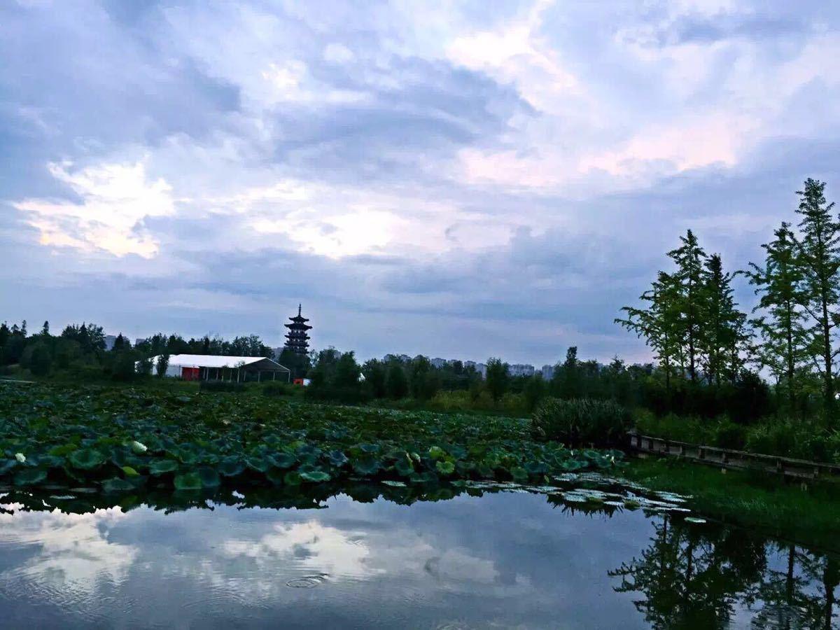 【携程攻略】湖南洋湖湿地公园景点