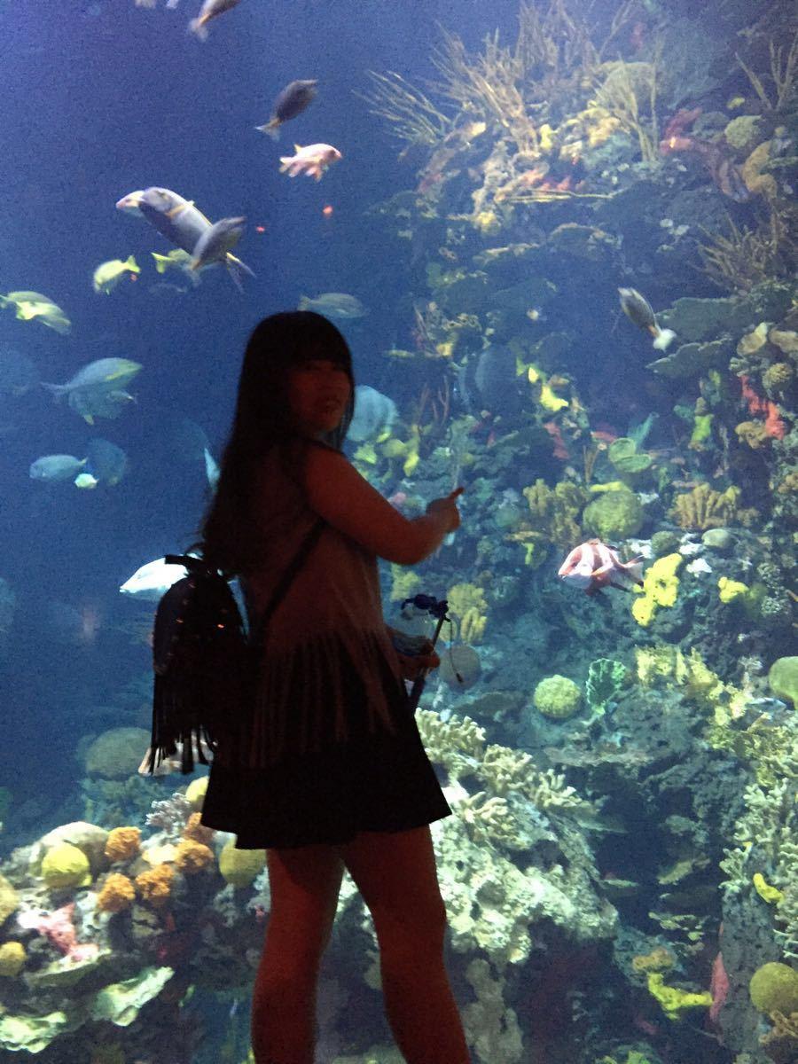 【携程攻略】上海长风海洋世界好玩吗