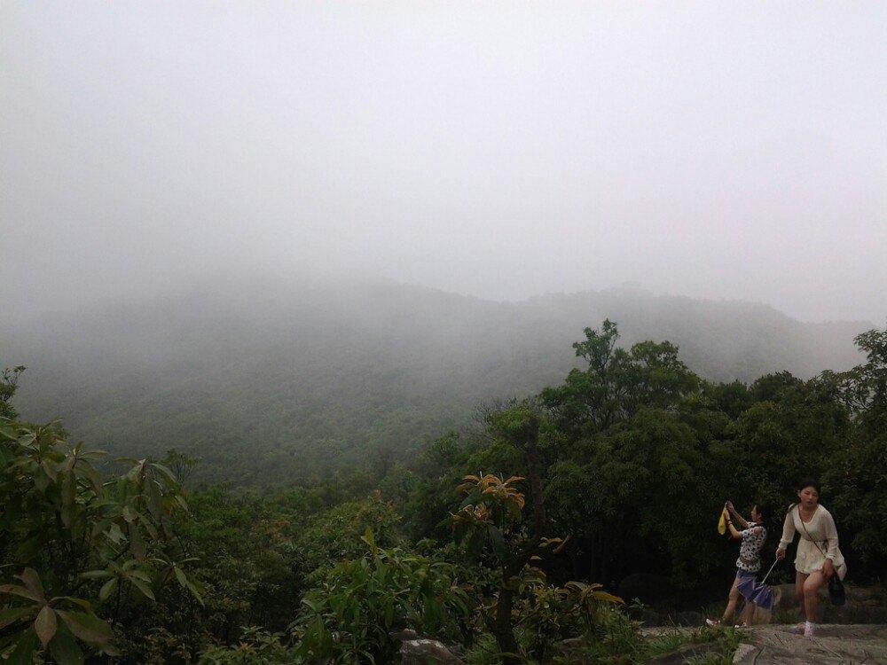 【携程攻略】广东大岭山森林公园景点图片