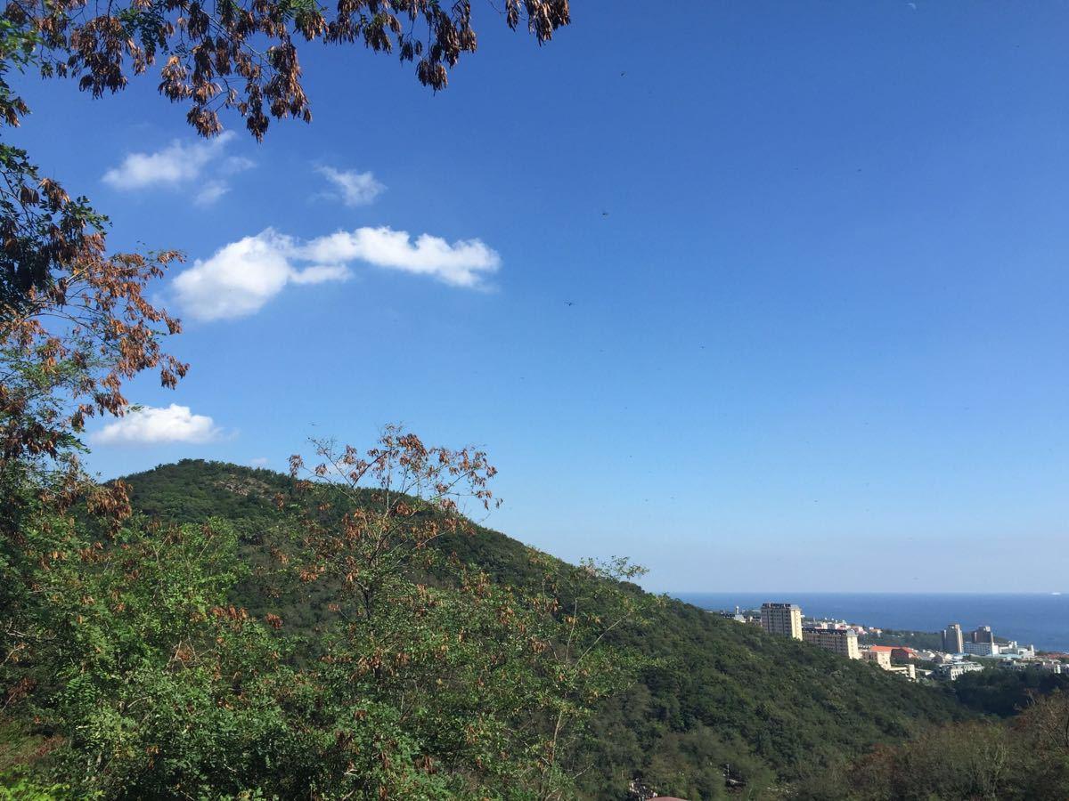 【携程攻略】辽宁大连森林动物园景点