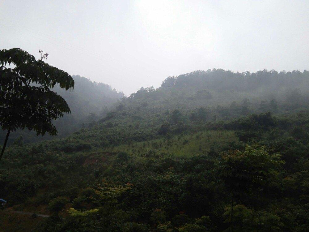 【携程攻略】湖北七姊妹山景点图片