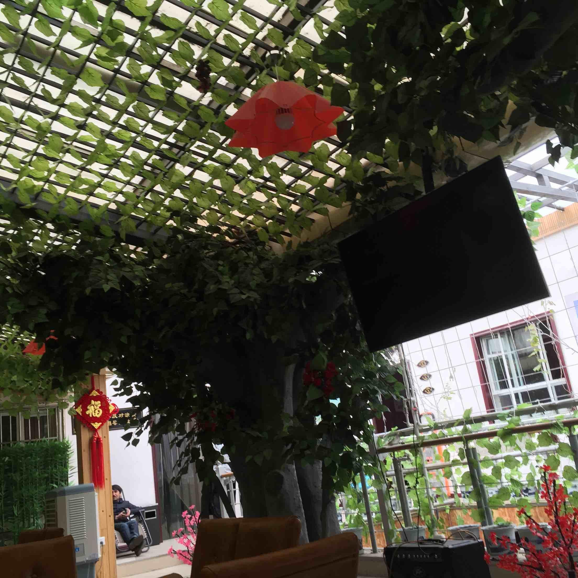 乌鲁木齐西域阳光美食城生态酒店