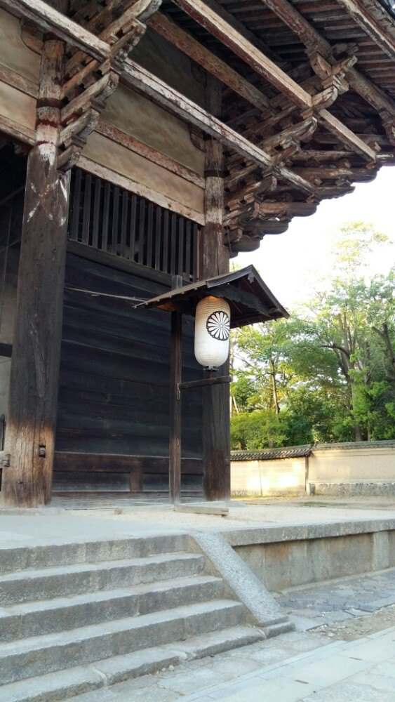 不到东大寺不能想象世界上最大的单体木结构房屋能有多大.