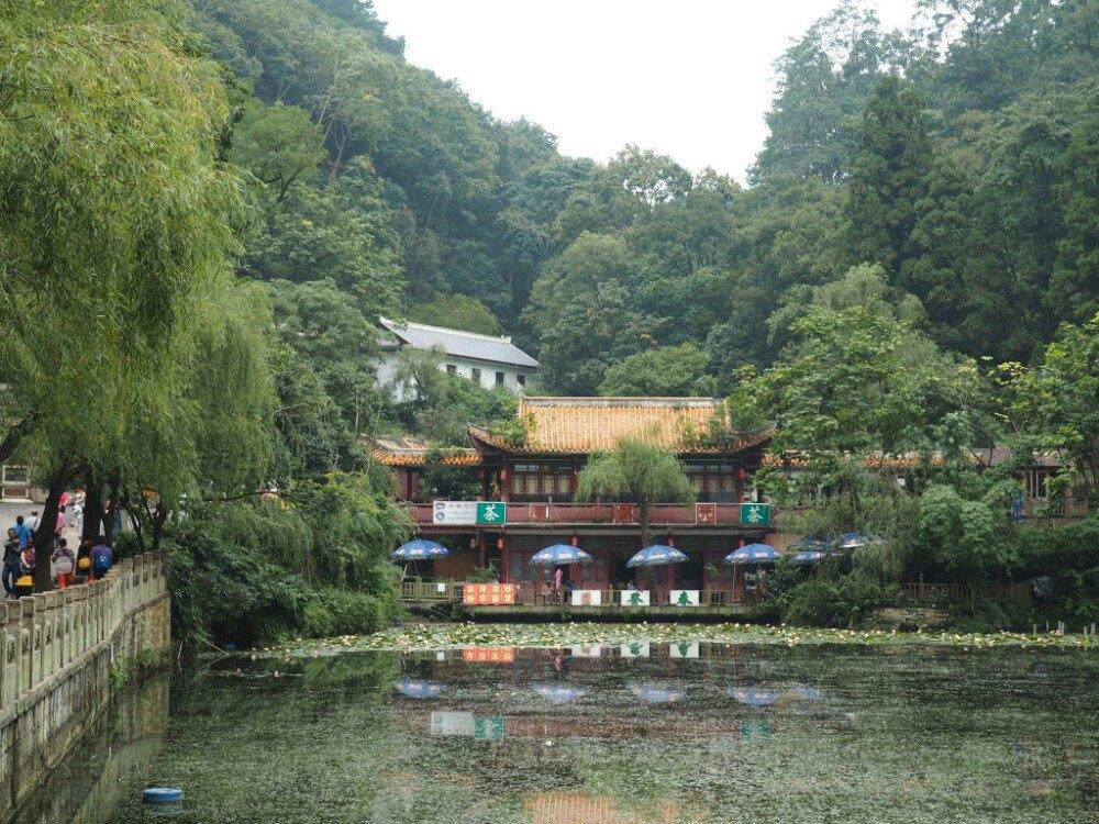 想知道:贵阳市 从黔灵山公园到贵阳森林野生动物园怎么坐公交?图片