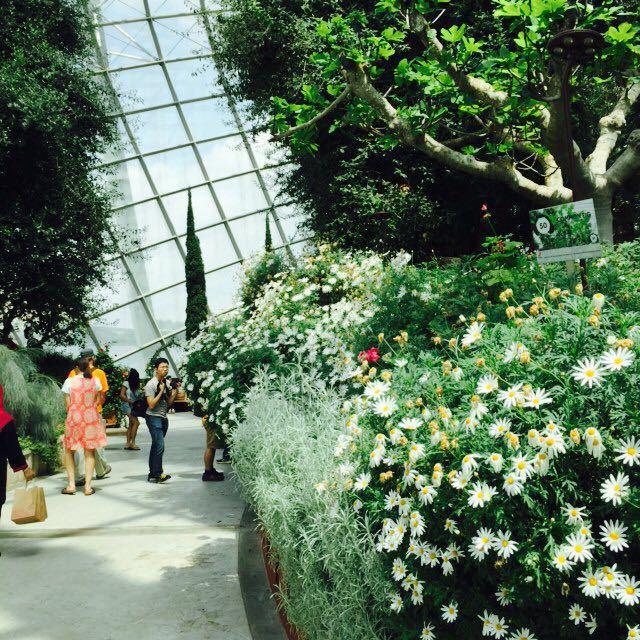 马来西亚大学植物园