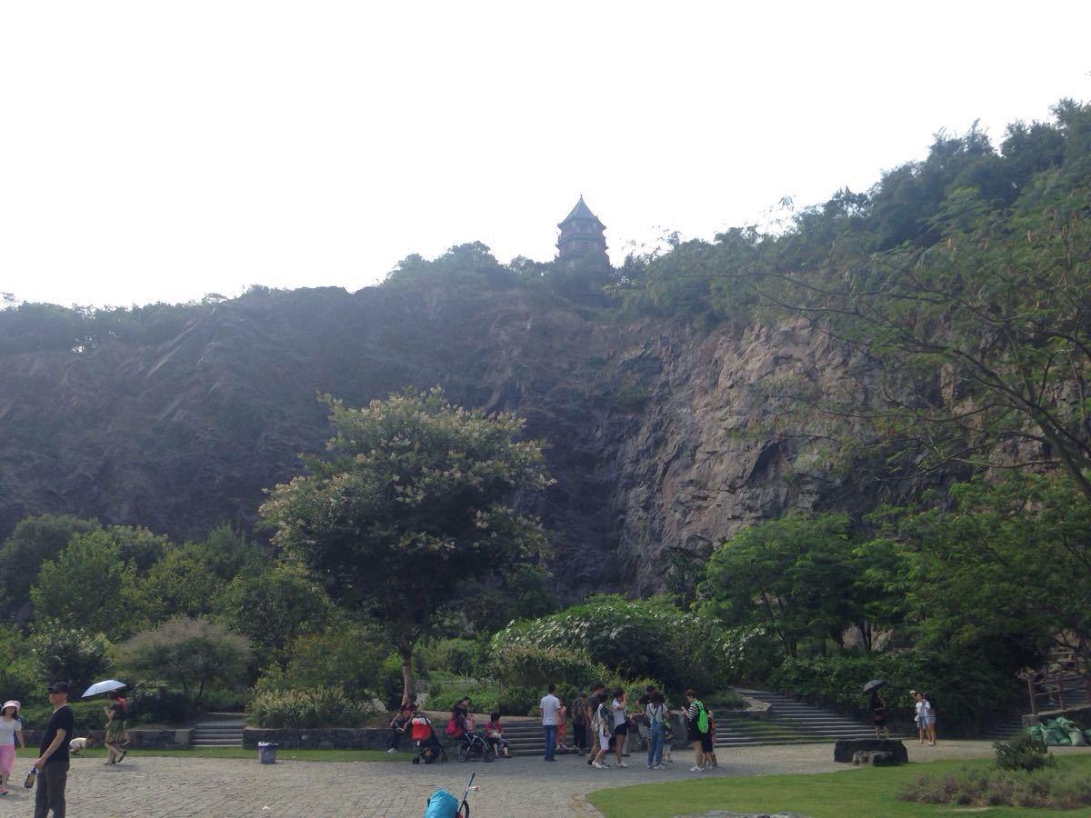 上海的公园里,辰山植物园是我最喜欢的,尤其温室里的花卉品种繁多,每年兰花展都会去看。  公共交通:轨道交通9号线洞泾站换乘松江19路可到1号门,19路区间车可到2号和3号门。想先去温室的可以从2号门入园。佘山旅游度假区绿色免费巴士停靠1号门和3号门,就是班次比较少。我还试过一种绿色出行方式:租自行车轨道交通9号线佘山站有租赁点,只需要交付押金即可,不过辰山植物园只有1号门可以还车,我们第一次不知道,在外围绕了一圈。  辰山植物园面积很大,分区域种植了不同季节盛开的花卉,所以每个季节都有看头(冬天外面就没