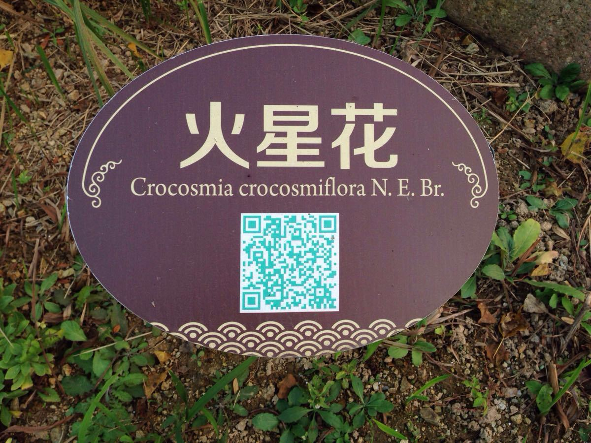 杭州湾公园密室国家湿地逃脱-回忆之谜游戏攻略图片