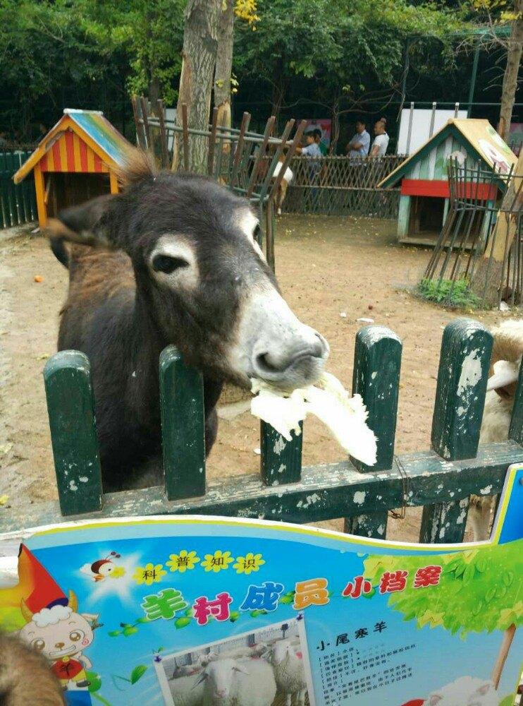 【携程攻略】江苏无锡动物园(太湖欢乐园)景点