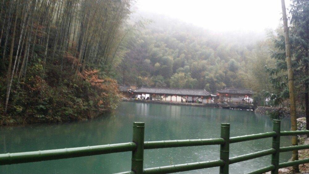 出游                                  竹林茂密,幽静,不巧赶上下雨图片