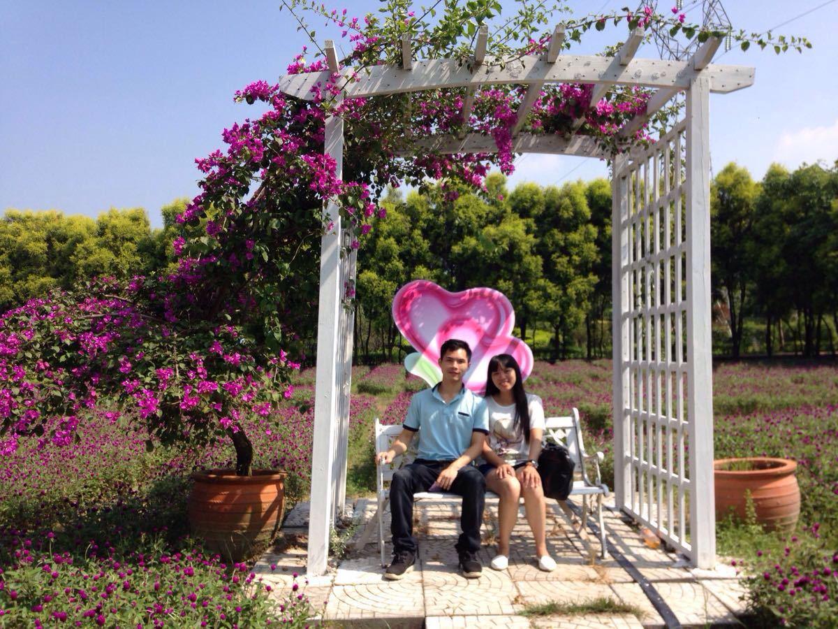世界香草糖果旅游景点攻萝卜31保卫略图攻略花都赛图片