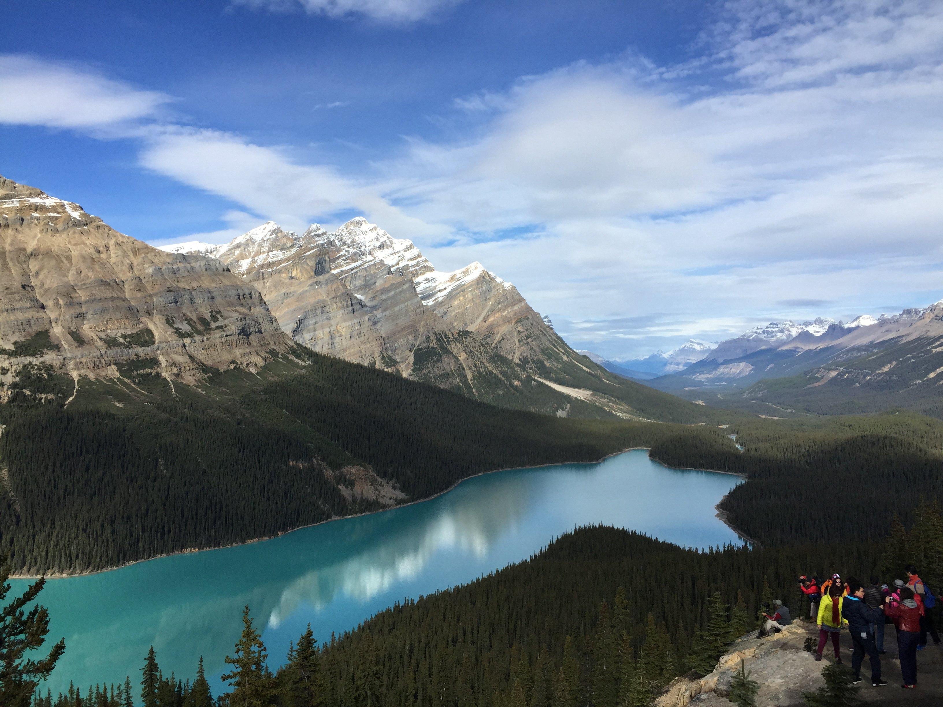 加拿大国旗-Peyto湖图片