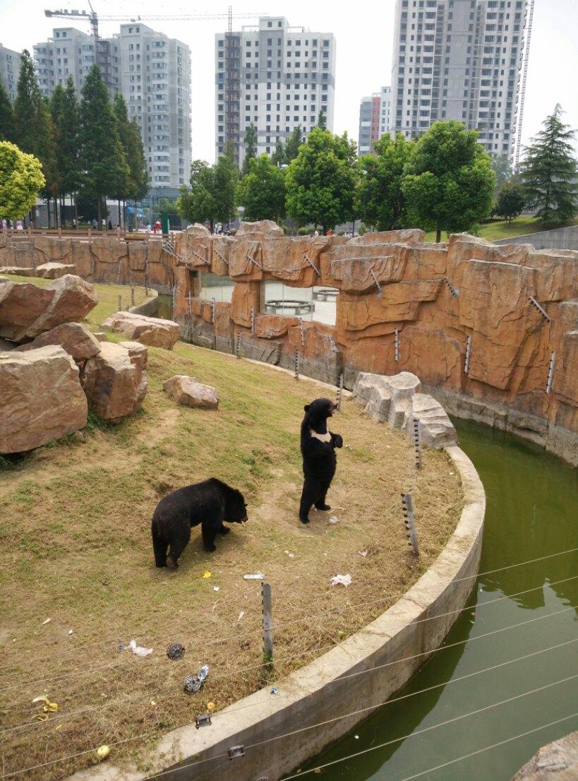 【携程攻略】江苏淮安淮安动物园好玩吗