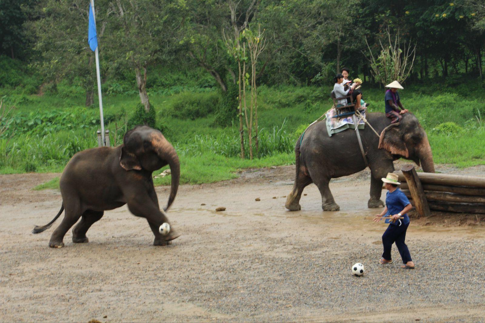 泰国清迈哪几个地方比较好玩