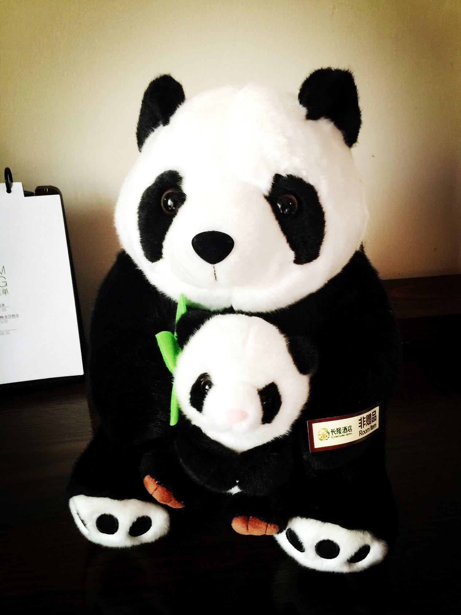 壁纸 大熊猫 动物 1500_2001 竖版 竖屏 手机
