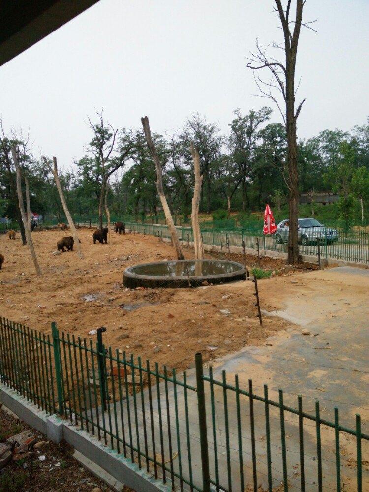 【携程攻略】河北秦皇岛野生动物园适合单独旅行旅游