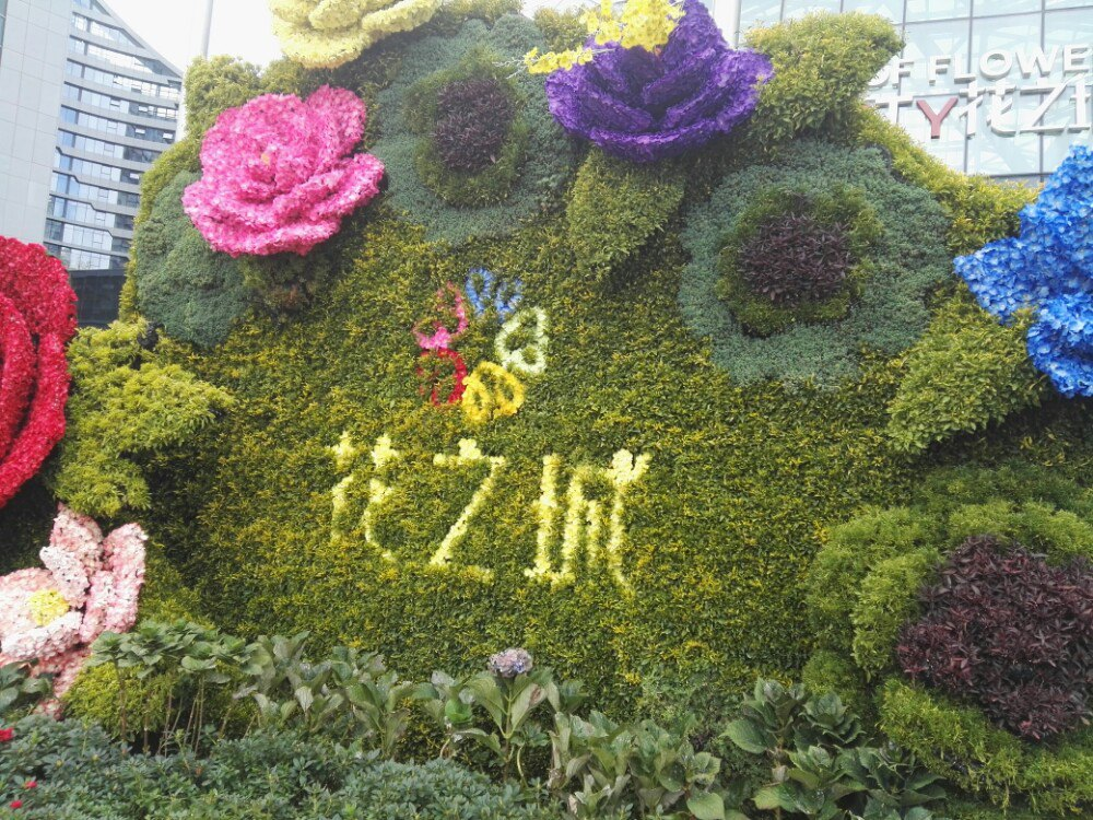 p图素材花