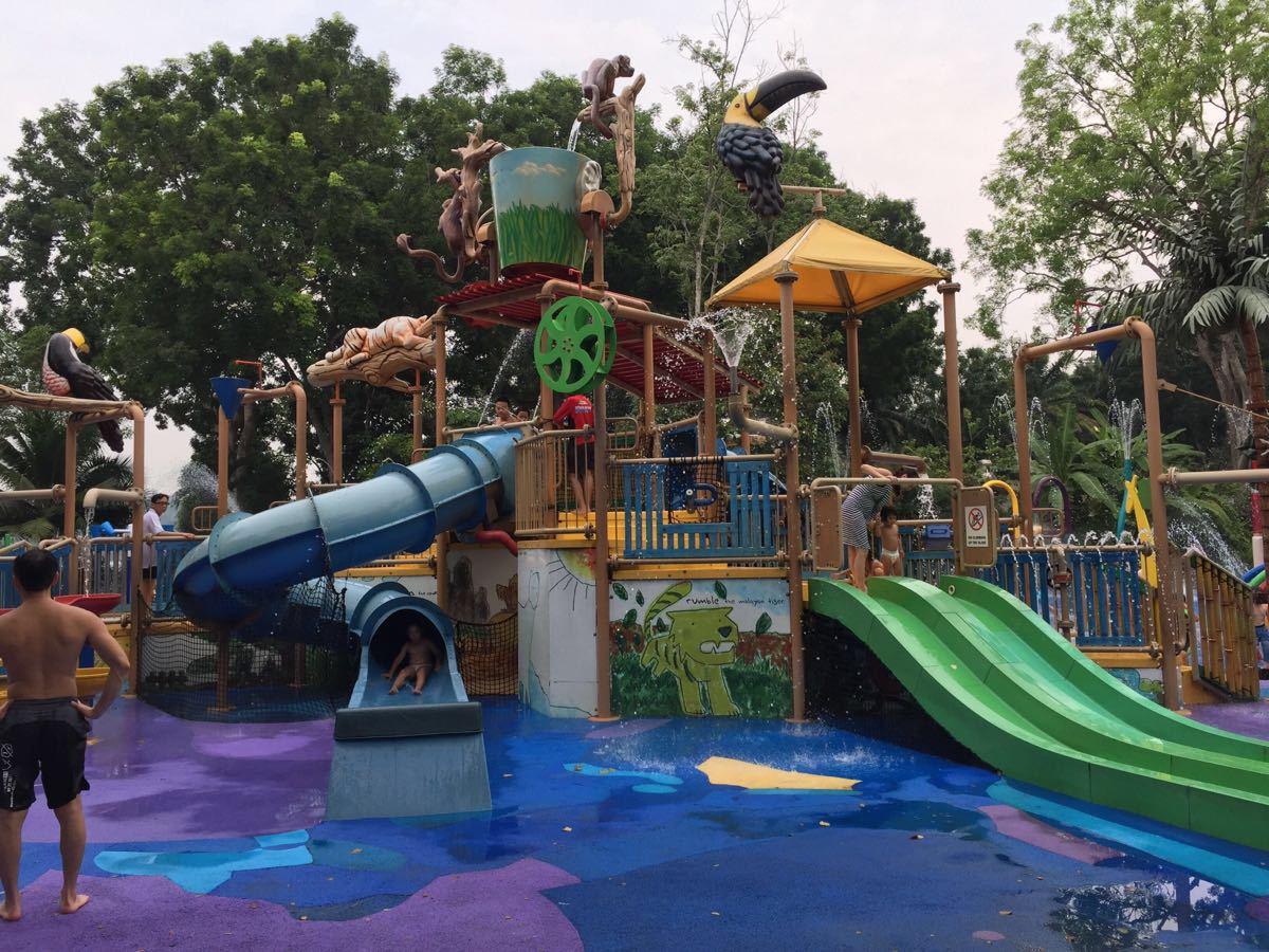 动物园和游乐场深圳 图片在哪个区