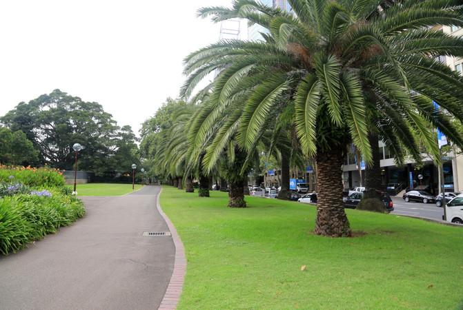 悉尼、堪培拉21日自由行⒁悉尼6-样板植物园-理发店室内设计皇家图片
