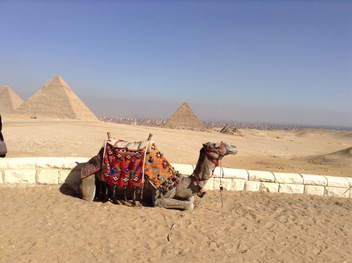 吉萨金字塔群耸立在一片沙漠上.
