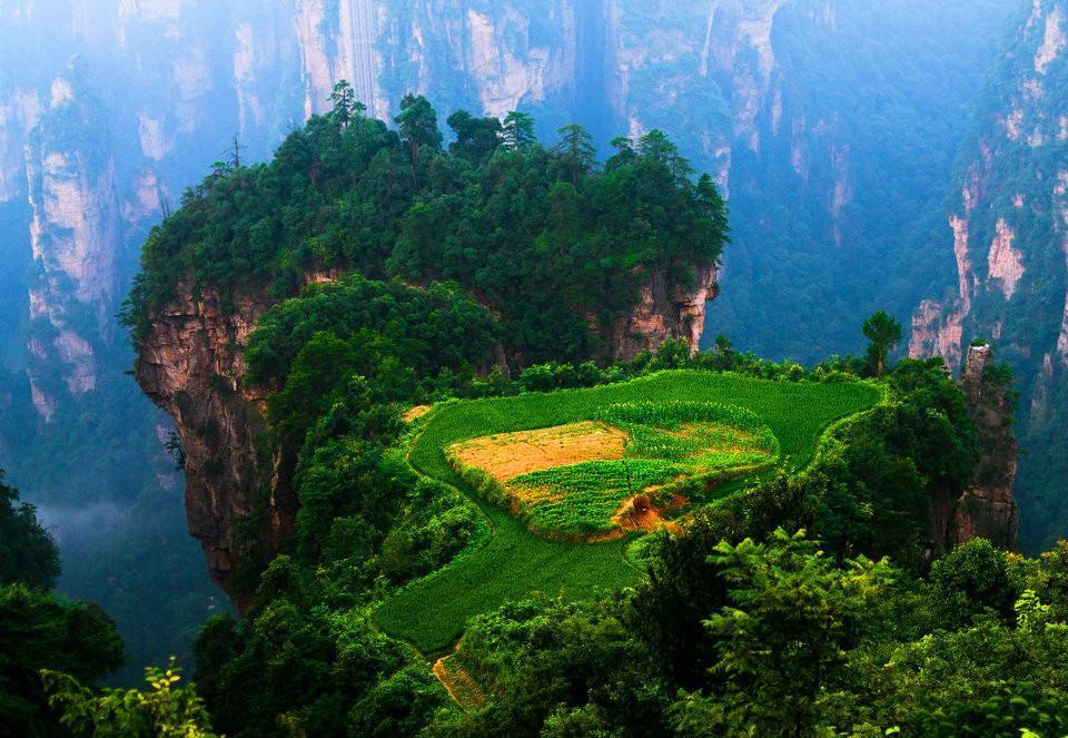 山峰从林盆景手绘图