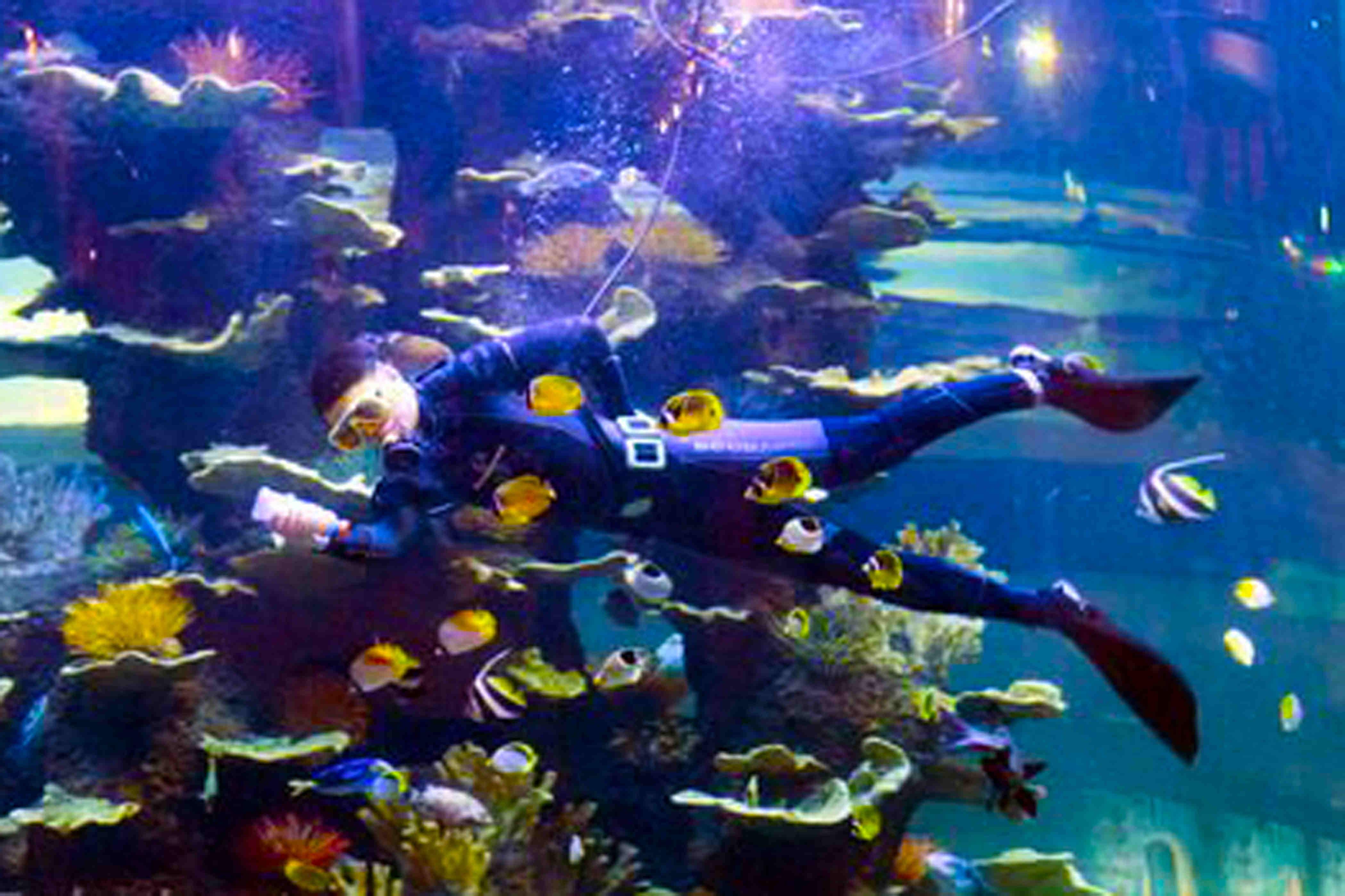 青岛海底世界