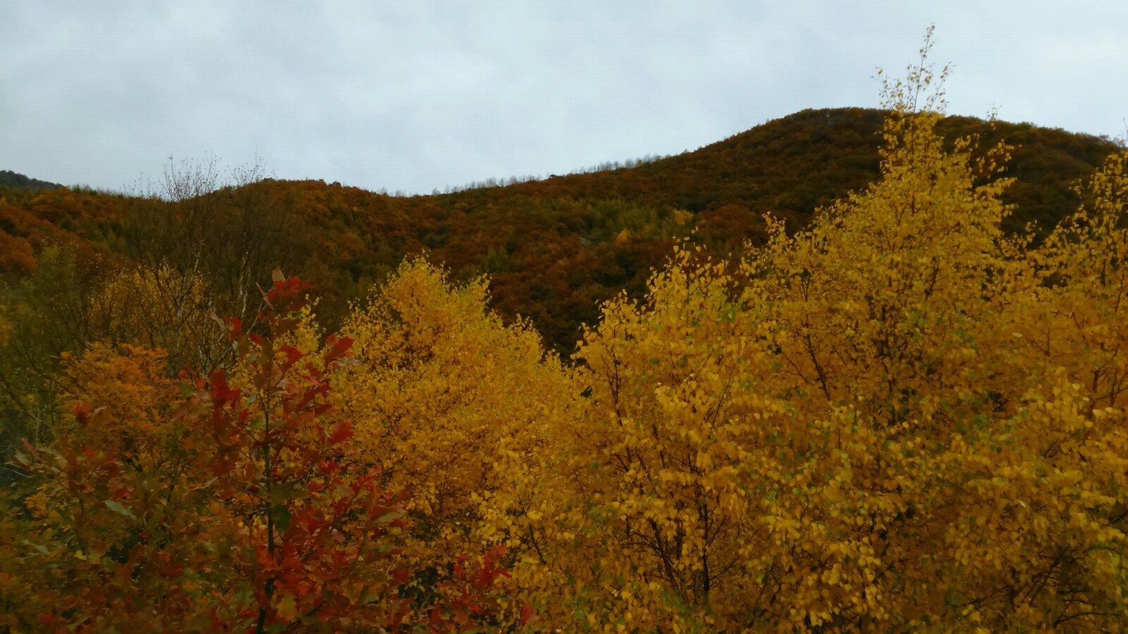 房山地质公园百花山风景区,可以自驾车开到山顶,山路崎岖,基本都是