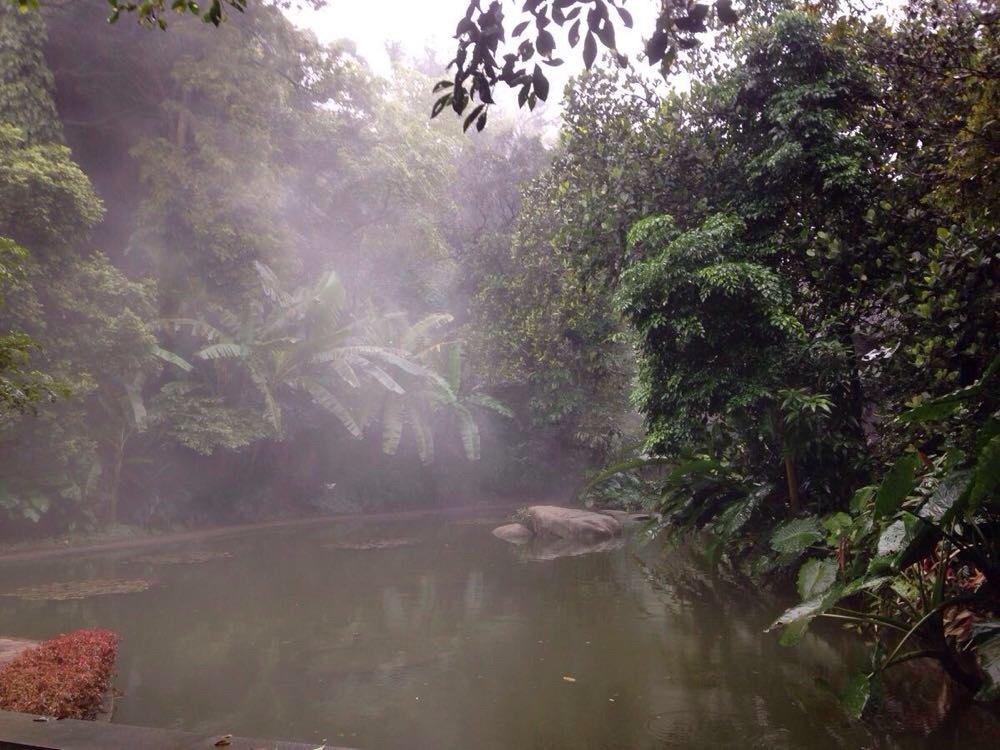 厦门园林植物园
