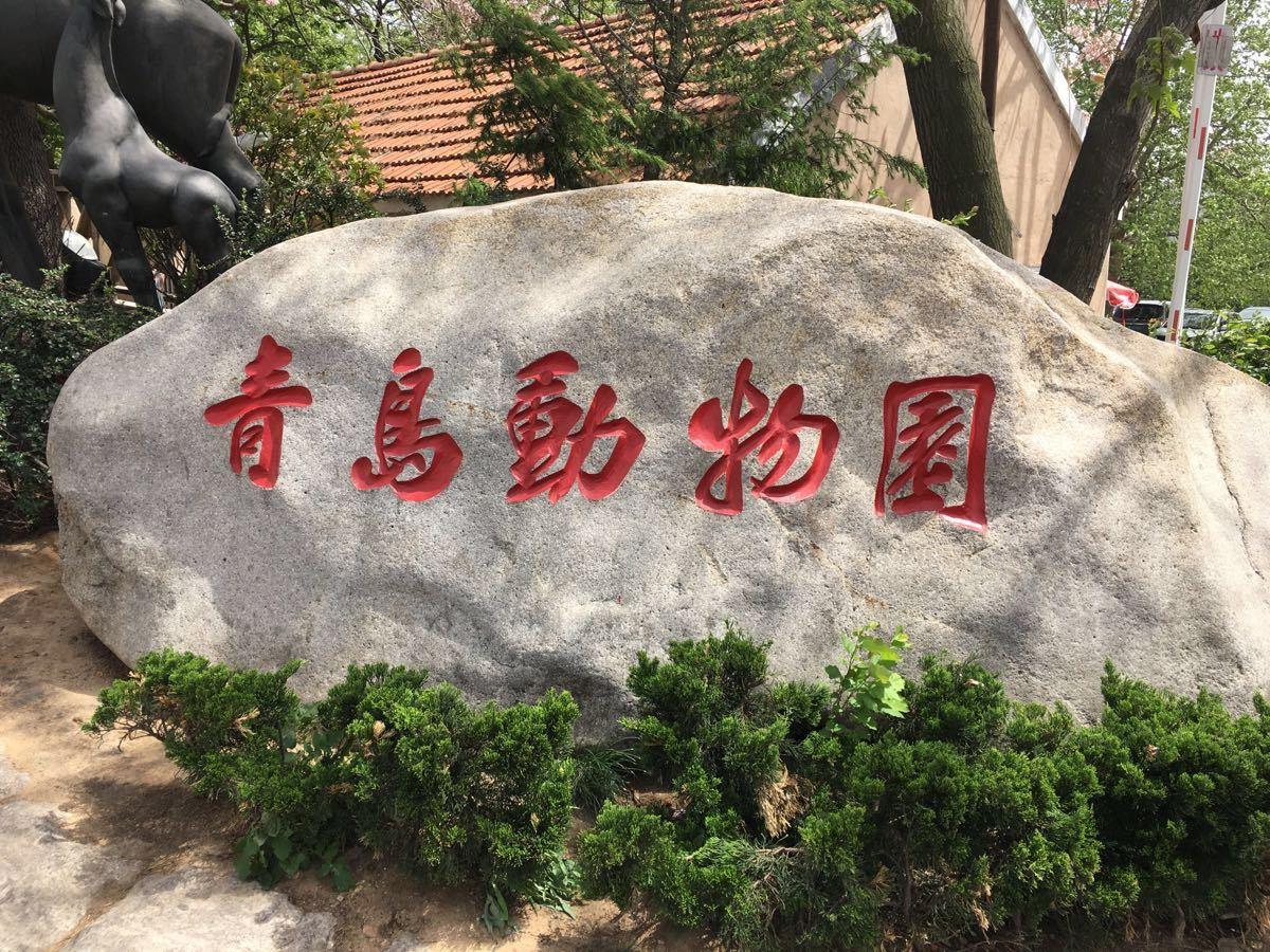 【携程攻略】山东青岛动物园景点