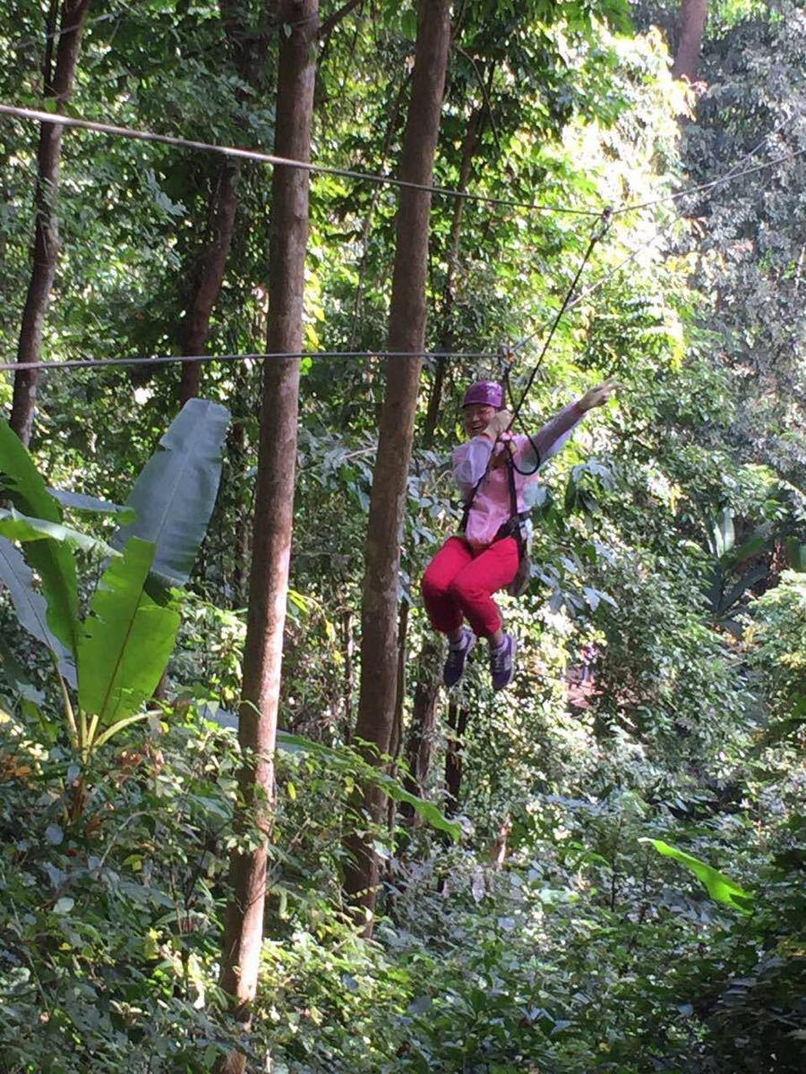 飞翔的长臂猿丛林飞跃图片