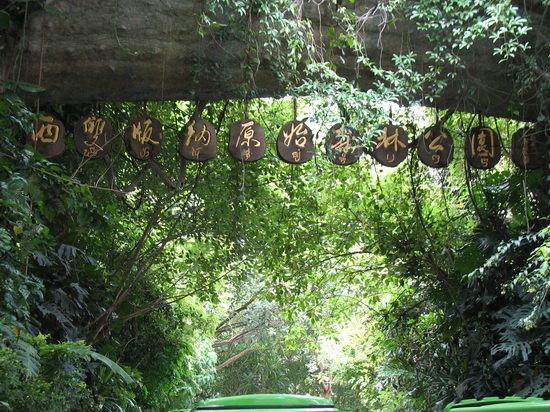 """原始森林,野生动物,民族风情""""为三大主题特色,融汇了独特的原始热带雨"""