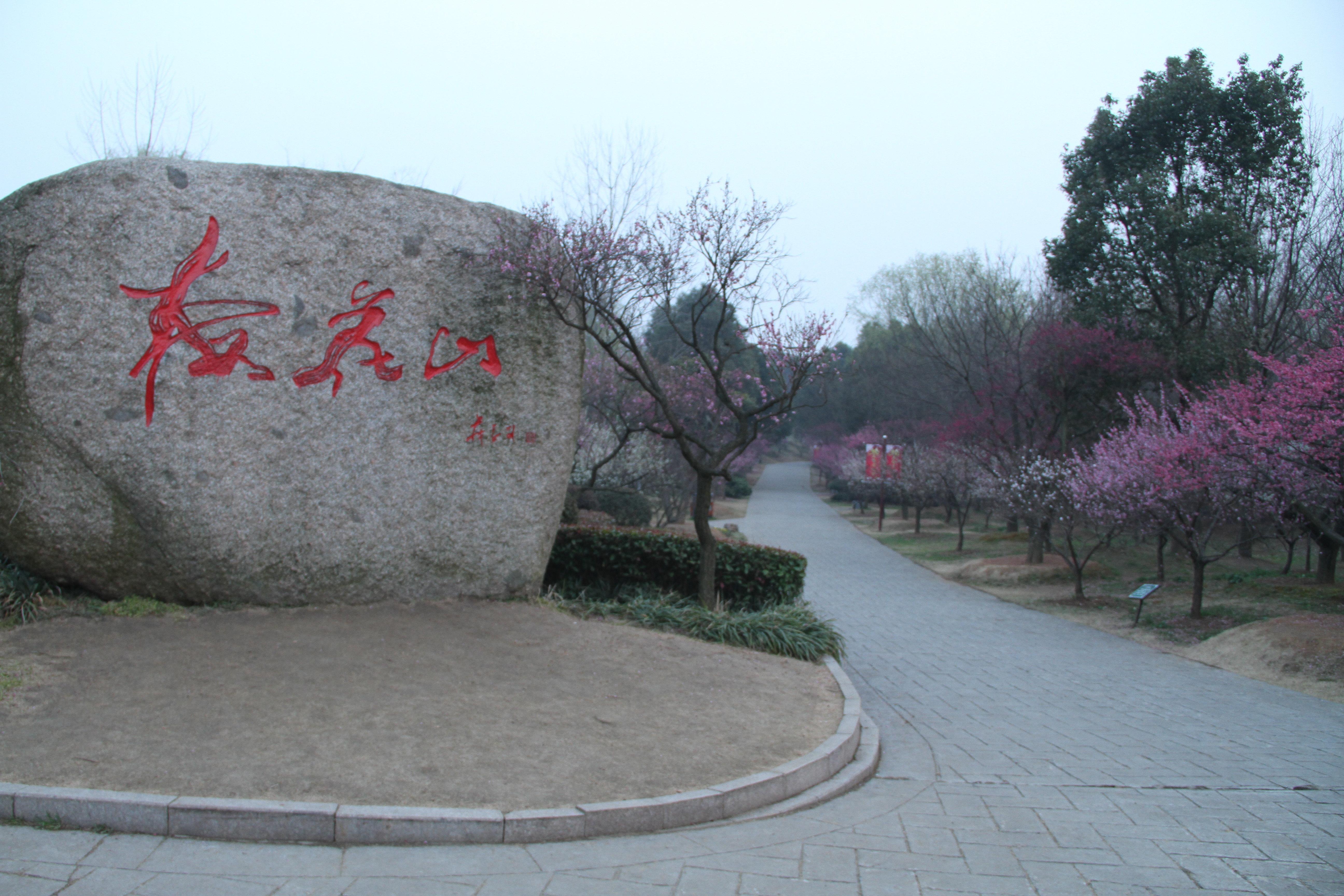 梅花谷公园