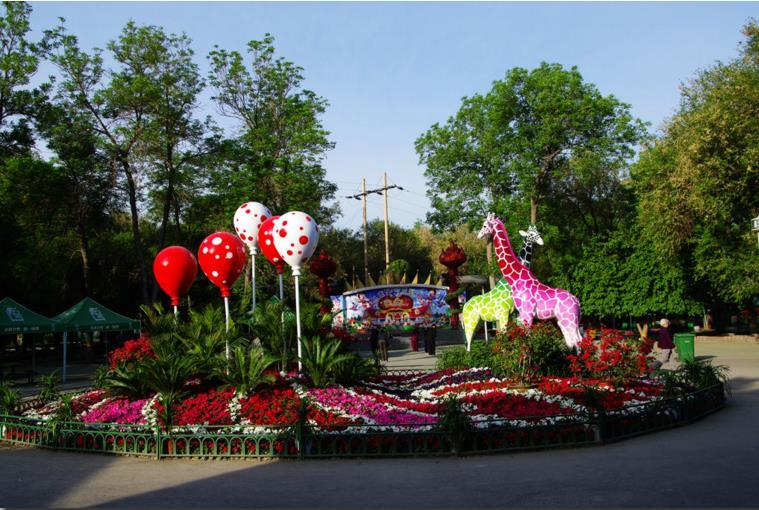 近几年,公园每年都举办大型活动,吸引了各族游客前来参观。1995年,儿童公园举办了九五大地走红文化艺术展活动,用4万把红伞组成各种不同的造型,使公园成了红色的海洋,曾在乌鲁木齐市造成了红色轰动效应。1999年,公园又成功地举办了乌鲁木齐大型花卉造型展,公园培育山苗40多万株,成形22万株,上盆15多万盆,还有89万盆成形苗木作为后备;主题造型19个,小型造型及小型景点造型近20余组,还在全园分布花带。同时还进行了专业插花及盆景艺术大赛,其中鲜切花达80多盆,盆景300多盆,成为乌市有史以来规模最大